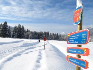 Ski de fond - Samoens - Lacs aux Dames